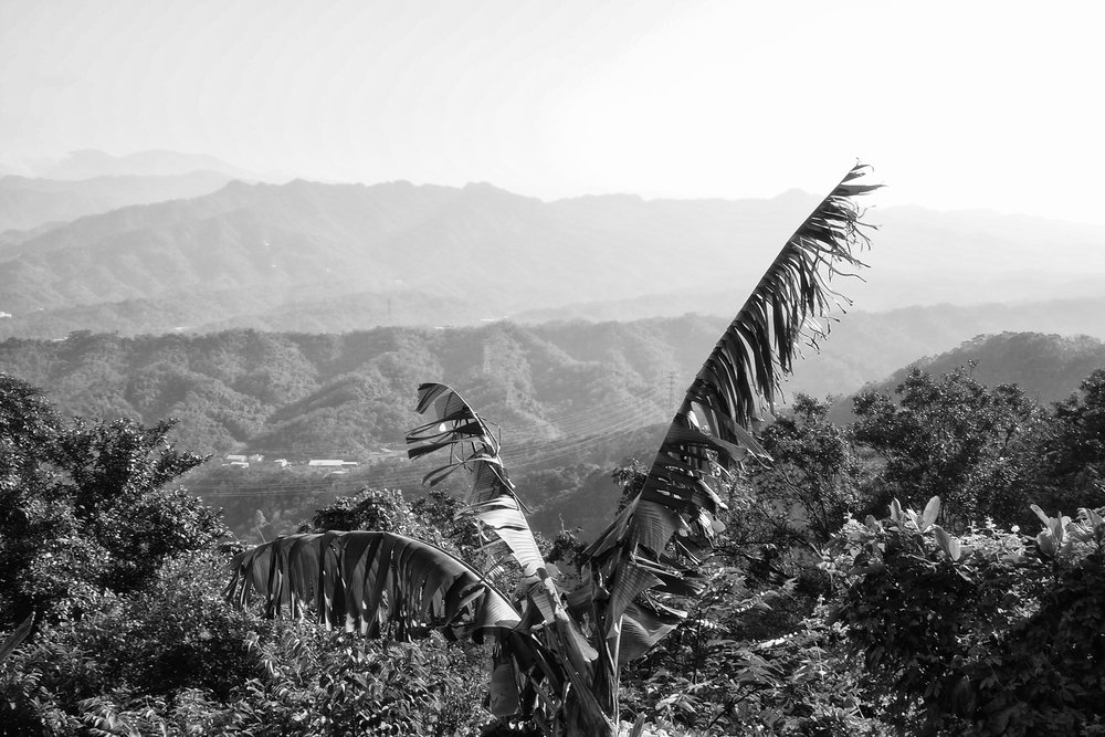the haze over the mountains. f22, ISO 200, 1/10, 35mm