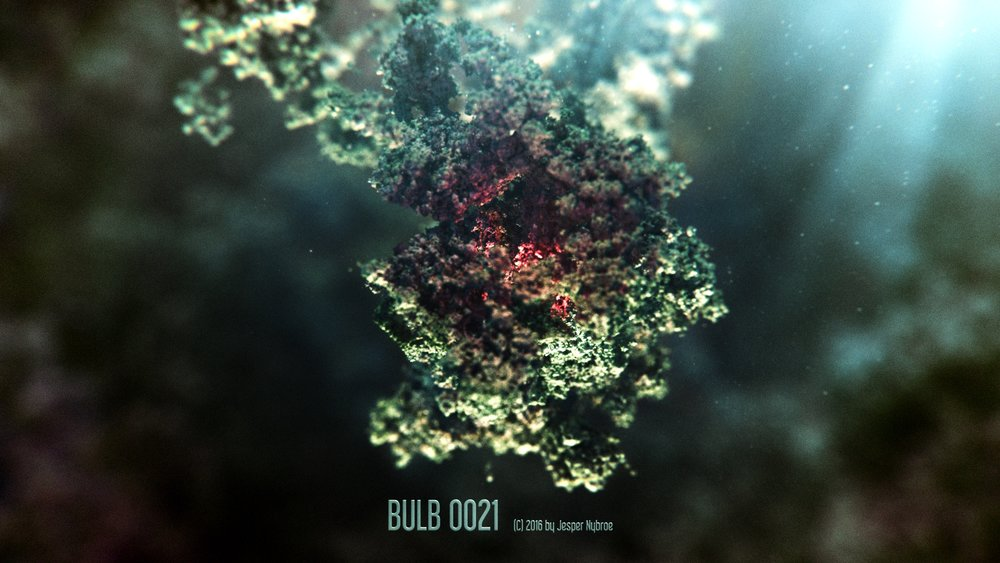 Bulb_0021.0001.jpg