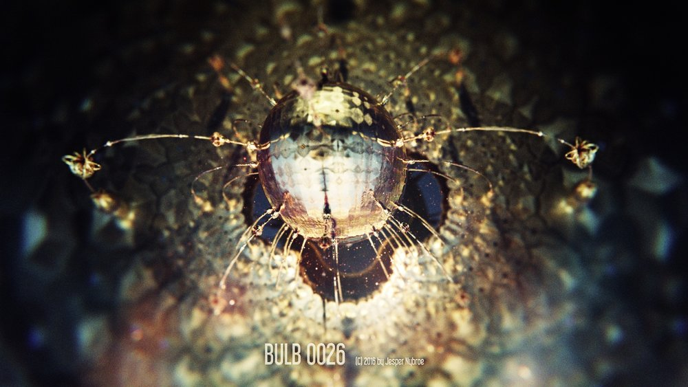 Bulb_0026.0001.jpg