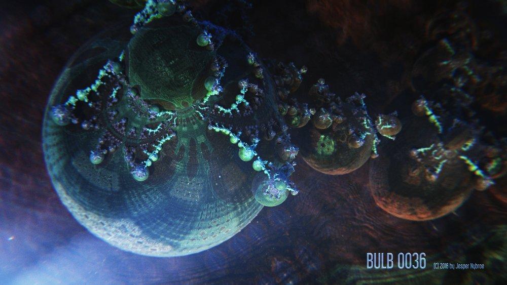 Bulb_0036.0001.jpg