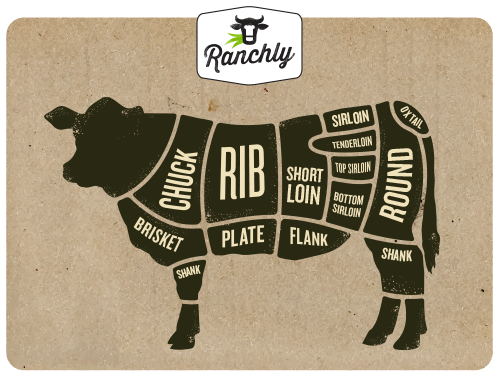 ranchly-beef-cuts_final.png