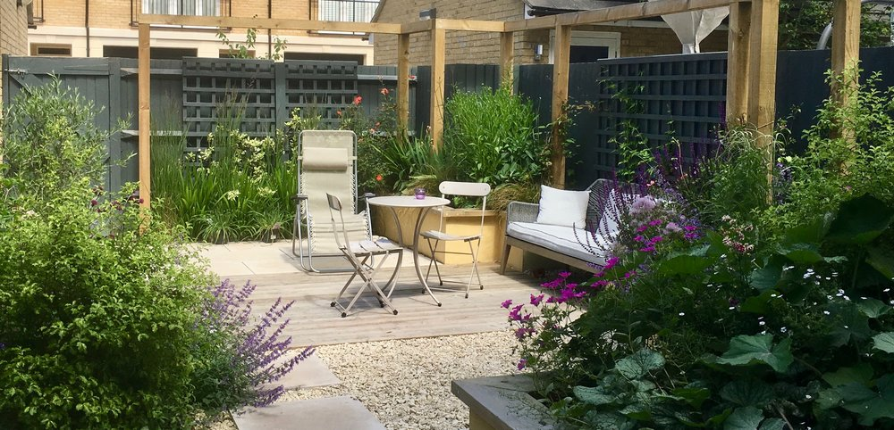 Small Contemporary Courtyard Garden One Year Later