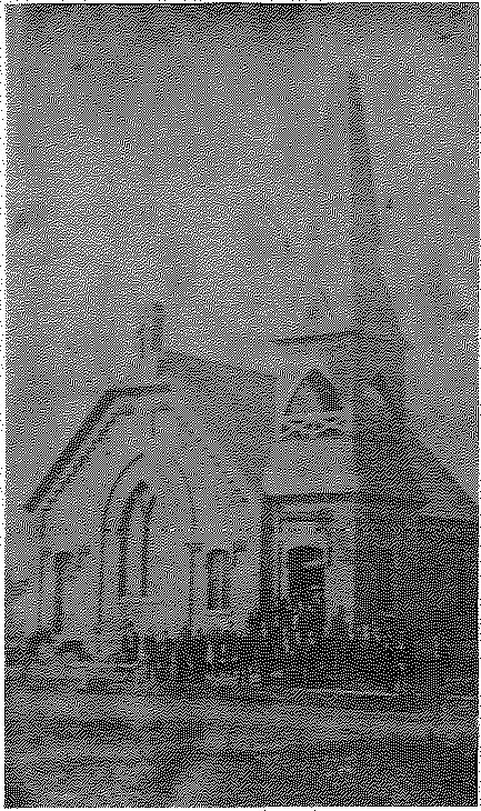 Trinity Lutheran Church, 1878