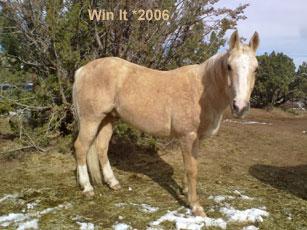 Win It_0.jpg