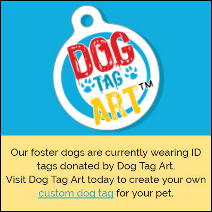 Dog Tag Art.jpg