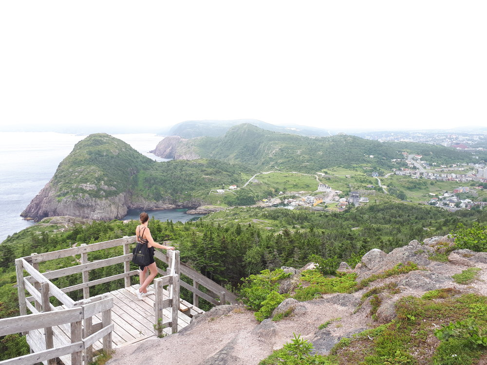 Descent into Quidi Vidi Village, St John's, Newfoundland