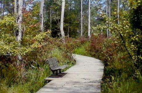Haw-River-State-Park-1-461x300.jpg