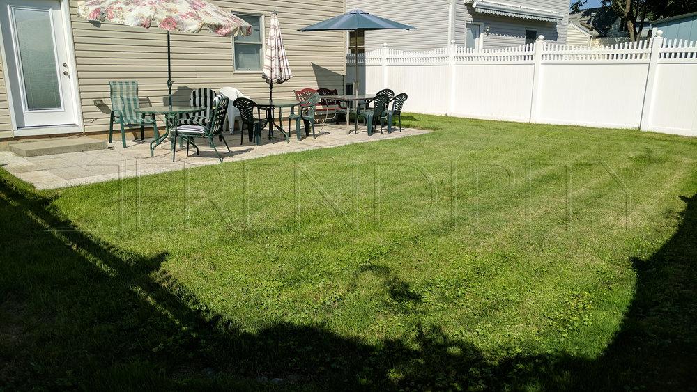 LI Backyard.jpg