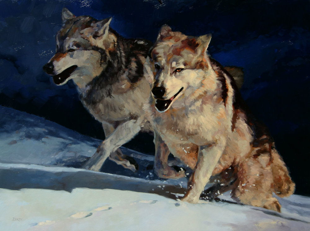 """Relentless"" 30x40 oil  Available at  Mountain Trails Gallery"