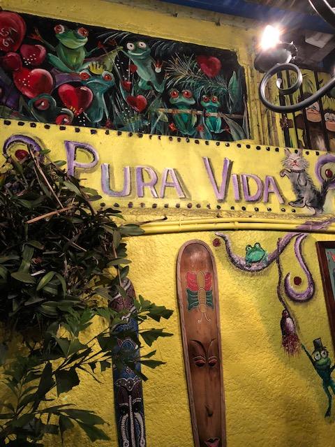 BCFG Blog - Pura Vida Image.jpg