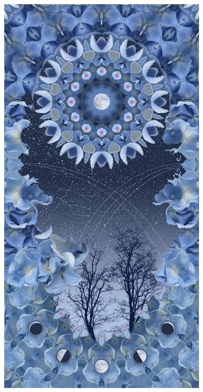 Gemini Moondance