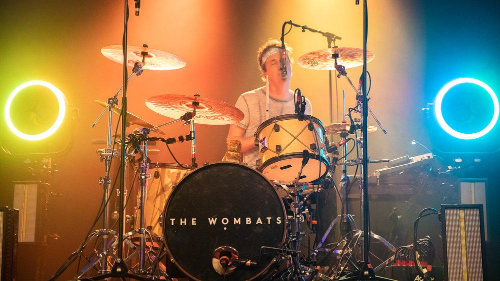 Wombat10.jpg