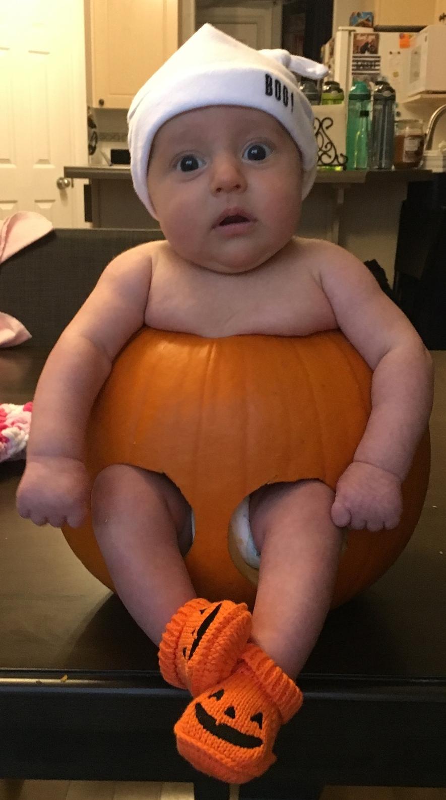 Baby Bird in a Pumpkin.JPG