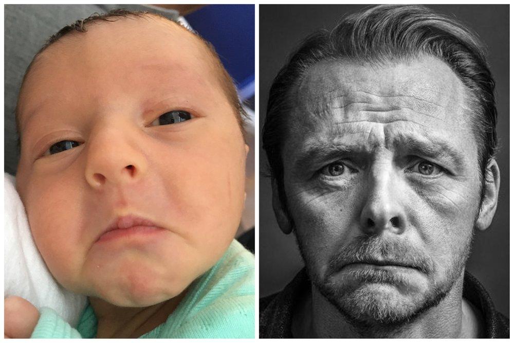 Who is more sad,Baby Bird or Simon Pegg?