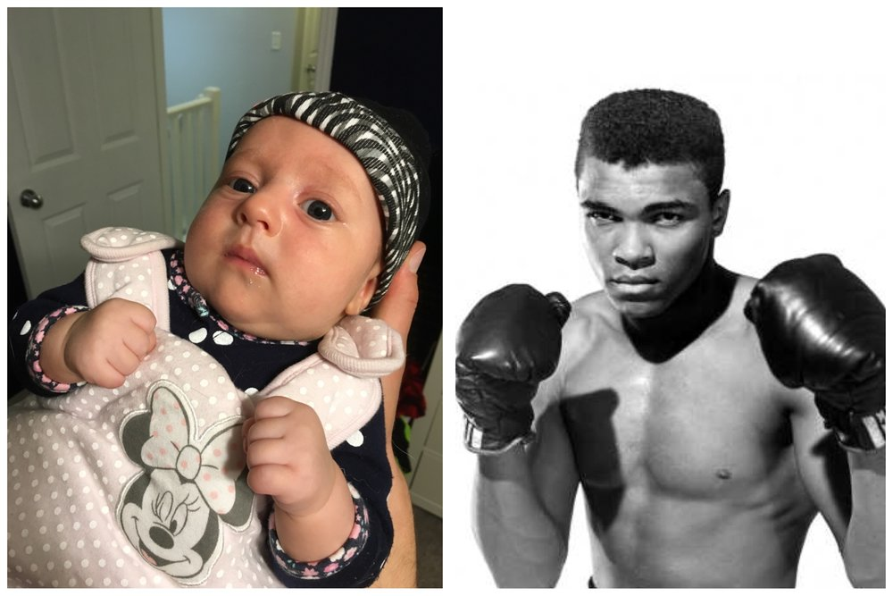 Float like a butterfly, sting like a bee, you want to come at Baby Bird? You'll have to go through Muhammad Ali