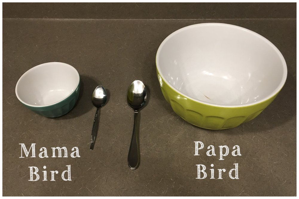 Size of Bowls We Use.JPG