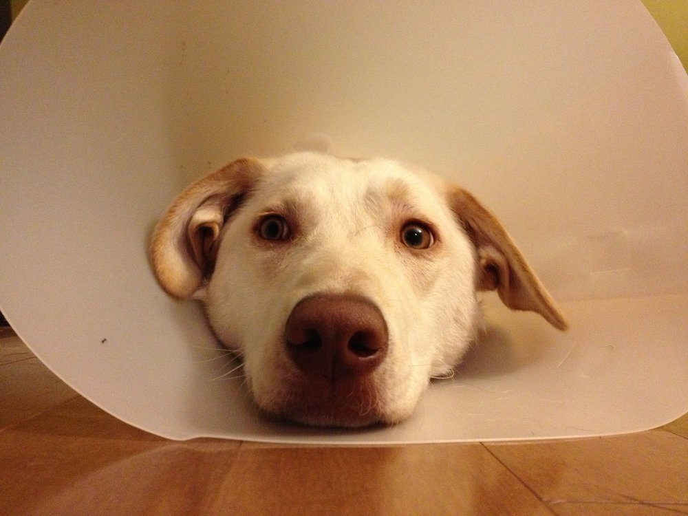 Storm In A Cone