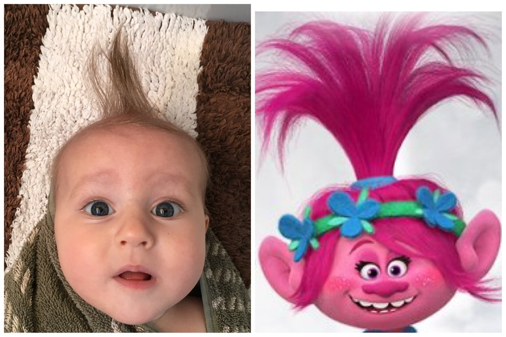 Maybe Baby Bird could play Poppy's sister in the next Trolls movie?