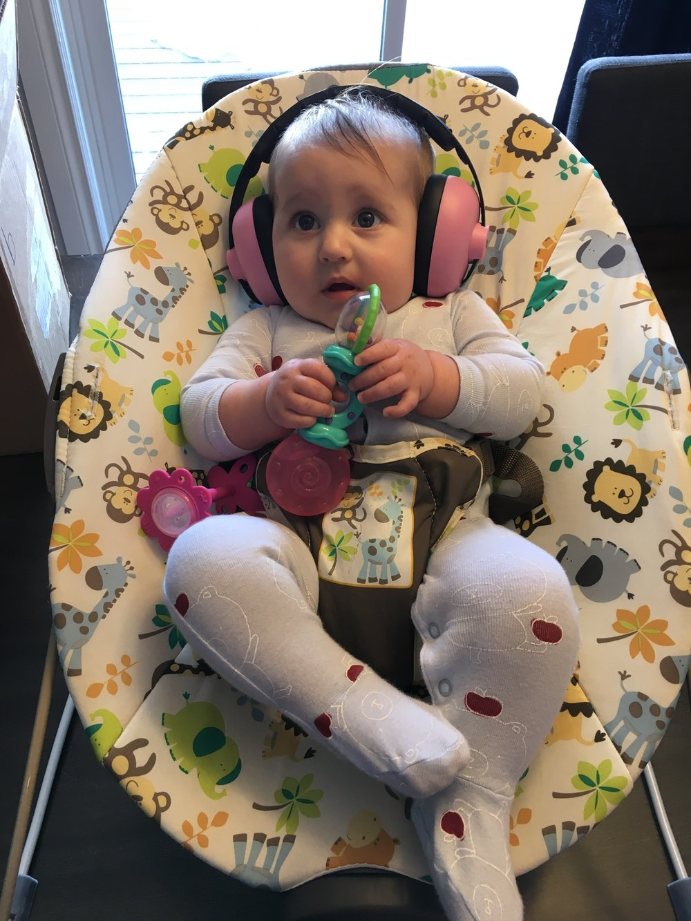 Baby Bird trying out her ear protection for the flight