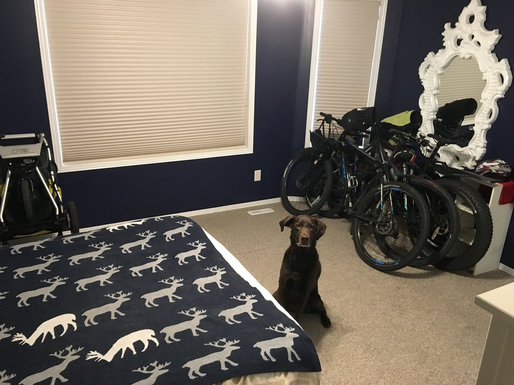 Bikes and strollers being stored in our bedroom. Thor had to get in the photo :)