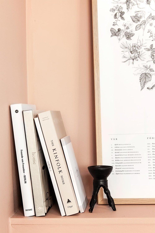 Pink walls bookshelf