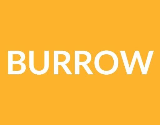 burrow sofas.jpg