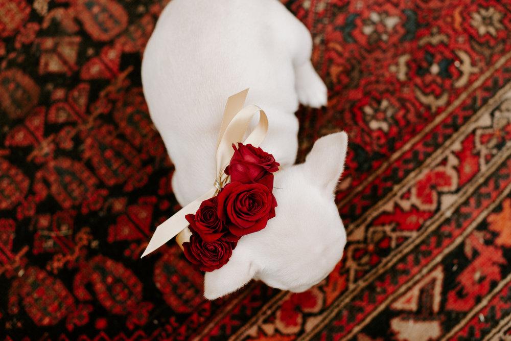 Emma Caitlyn Florals-0090.jpg