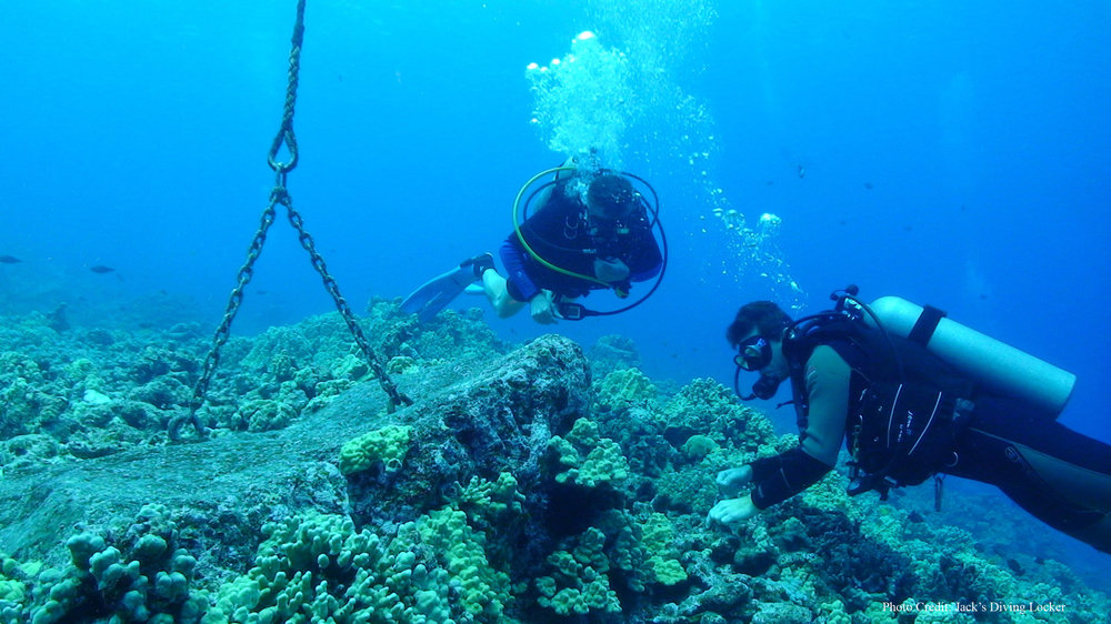 Diver  Mooring11 - With Credit.jpg