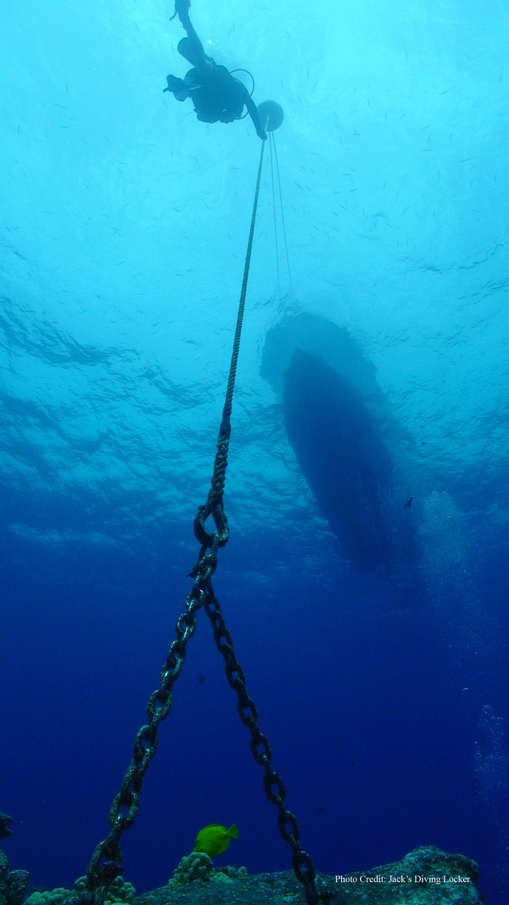Diver  Mooring7 - With Credit.jpg