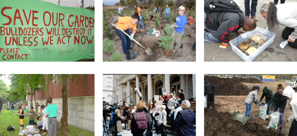 Figure 1:  Images of the six stewardship functions.  Top row, from left to right:  Conserve:  community garden preservation sign. Photo courtesy of NYC Urban Field Station.  Manage:  volunteers at a MillionTreesNYC tree planting. Photo courtesy of NYC Parks.  Monitor:  volunteers monitoring an oyster research station. Photo courtesy of Billion Oyster Project.  Bottom row, from left to right:  Educate:  GrowNYC youth urban forestry education program. Photo courtesy of NYC Urban Field Station.  Advocate:  community gardeners protesting on the steps of City Hall. Photo courtesy of Edie Stone.  Transform:  volunteers with the Lower East Side Ecology Center bagging compost for delivery to NYC residents.  Photo courtesy of LESEC.
