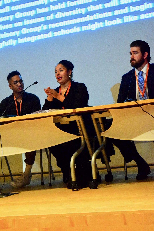 Panel on D15 School integration plan