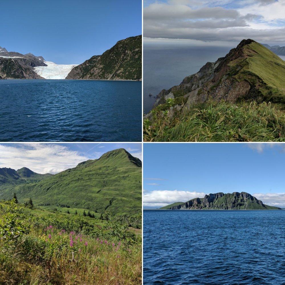 WEEK NINETEEN - Aleutian Appreciation