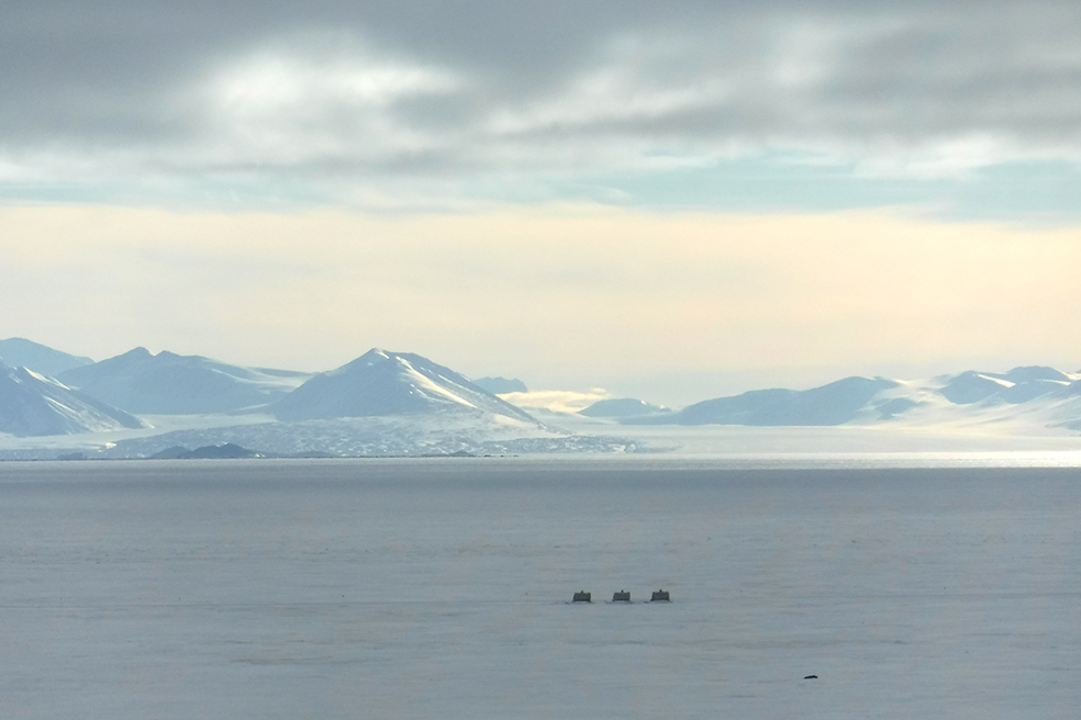 The view from Crary Library of Blue Glacier to the north of McMurdo across the sea ice. The Royal Society Range was named by Robert Falcon Scott for the Royal Geographic Society of the UK, which provided financial support to his British National Antarctic Expedition, 1901-04. Credit: Caitlin Scarano