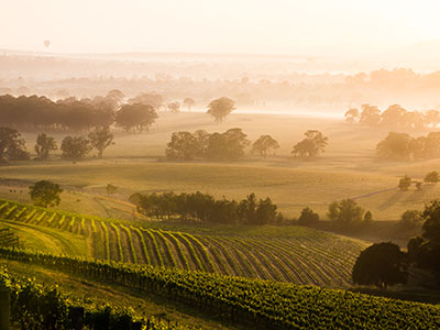 New-South-Wales-Wine-Tours.jpg