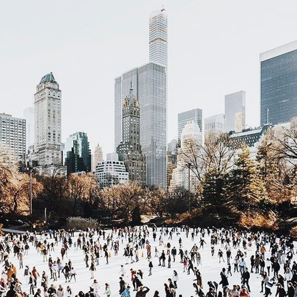 5. STROLL:Through Central Park, finishing at the famous ice rink.
