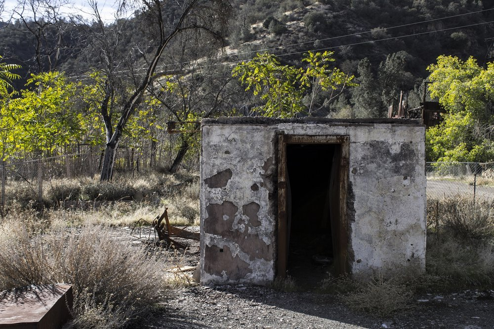 Life Finds A Way - this is a shot that I took when accessing a closed Superfund site in the Diablo Mountain Range. The water and buildings are so contaminated - but yet life continues to slowly return.