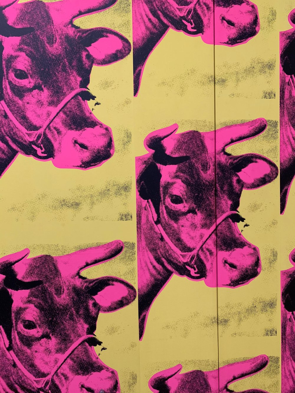 Warhol dug cows.