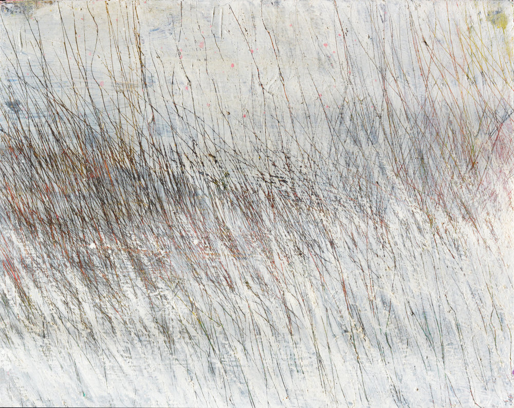 Scratched Field.jpg