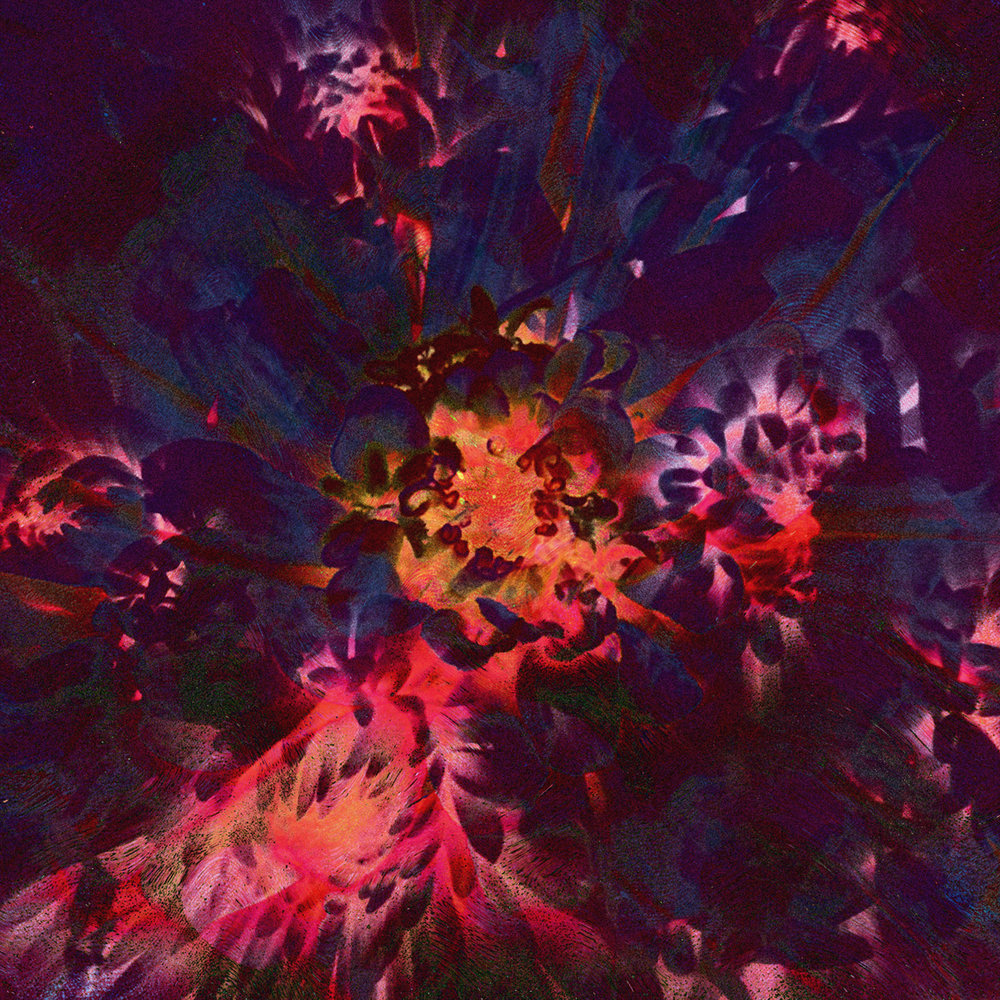 flowers_collage_r1.jpg
