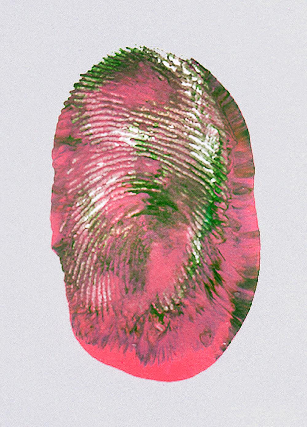 fingerprint_v1.jpg