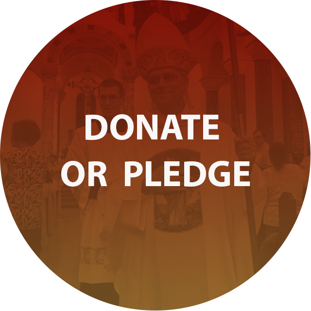 donate-or-pledge.png