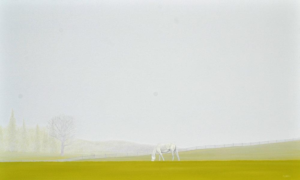 White Horse, 36x60