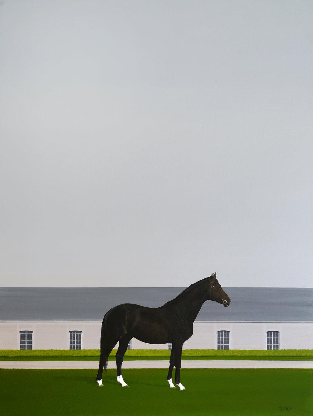 Racing Black, 48x36