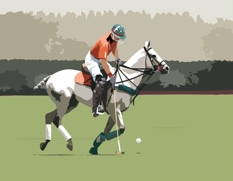 Polo by Twilight 23x25