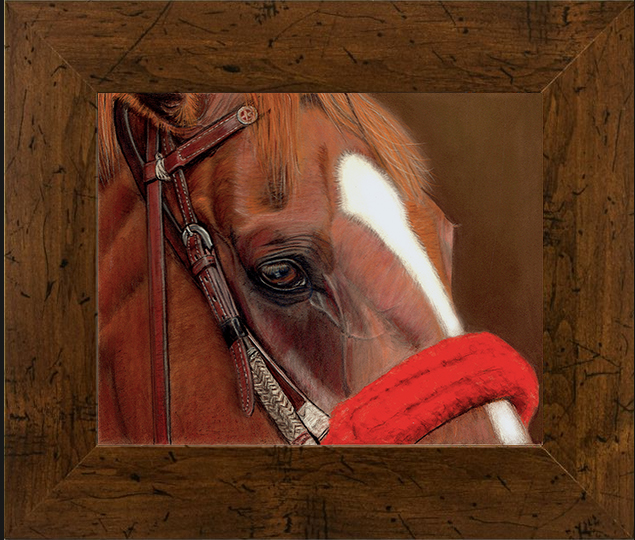 The Outriders Pony, 8x10