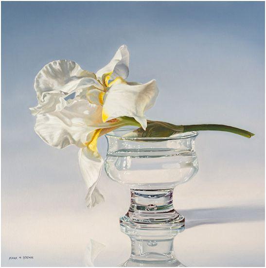 White Iris, 20x20