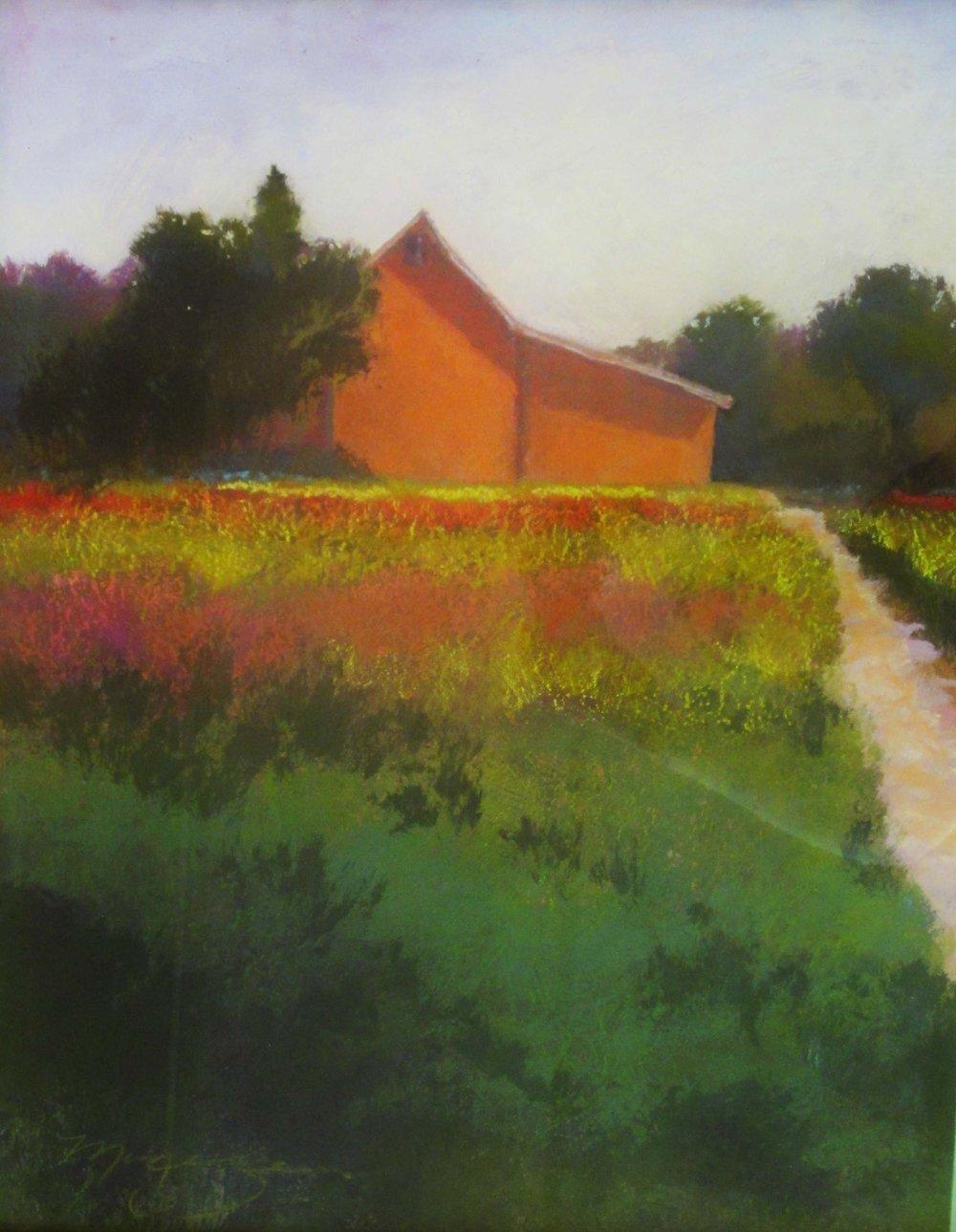 Barn and Field, 24x20