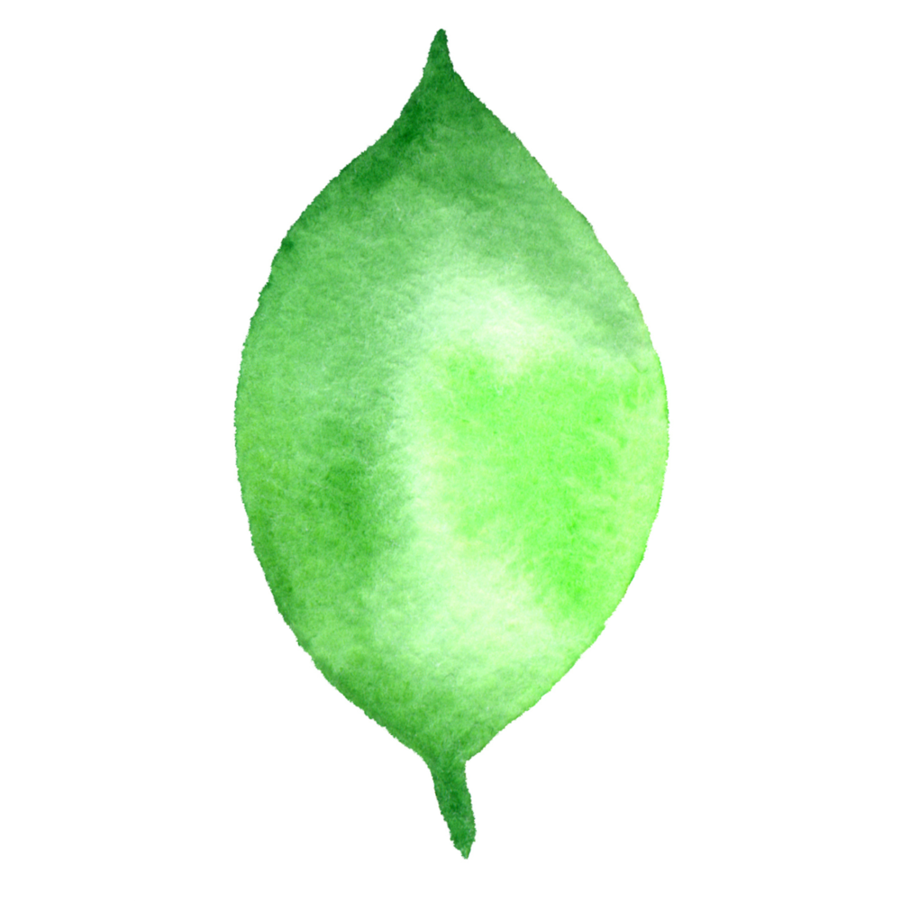 Large Leaf #5 2017-09-26.png
