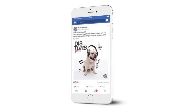 01 SocialMedia_Pet.jpg