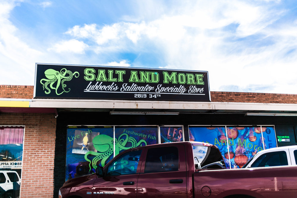 About Salt & More - Jason wanted to create a space where people from all over could come and enjoy and learn about the their hobby.After four years of doing business it has become the biggest local supply store and fish tank services in our area.